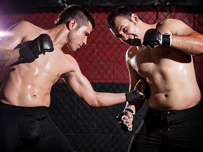 mixed martial arts 1