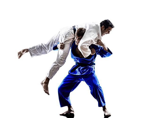 Brazilian Jiu Jitsu 2