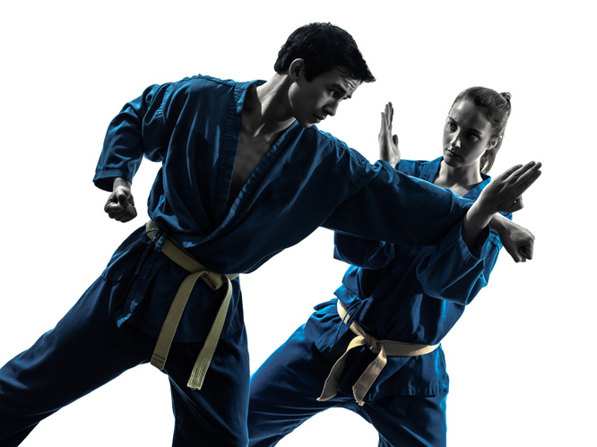 Kempo Karate 2